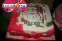 cynthia A seasonal-cake (14)