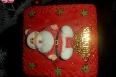 cynthia A seasonal-cake (12)